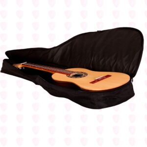 کیس گیتار