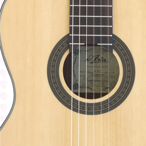 گیتار کلاسیک آریا مدل AK-30CE